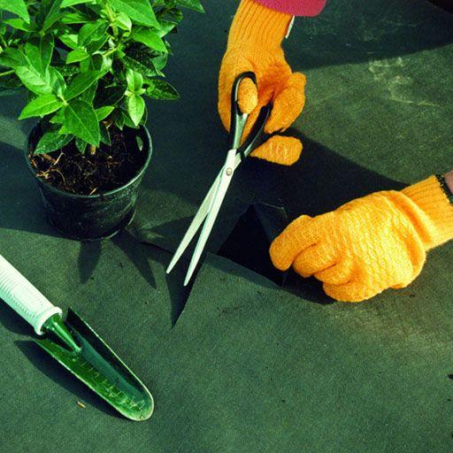 Garden & Patio Maintenance